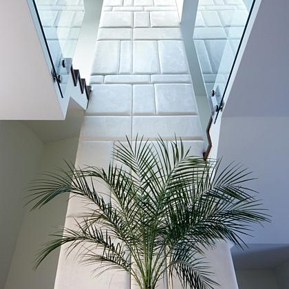 Dom-gdynia-witomino-palma