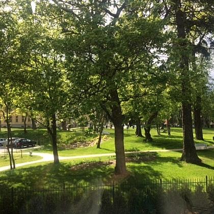 Park-inzynierska-2
